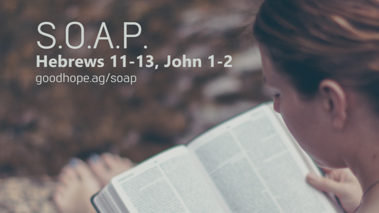 This Week's S.O.A.P.